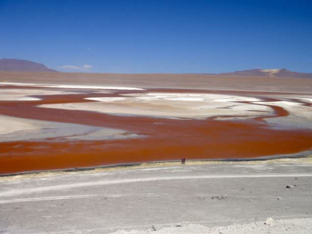 Red Lagoon Bolivian Salt Flats