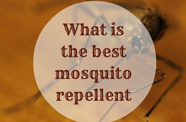 What isthe best mosquito repellent