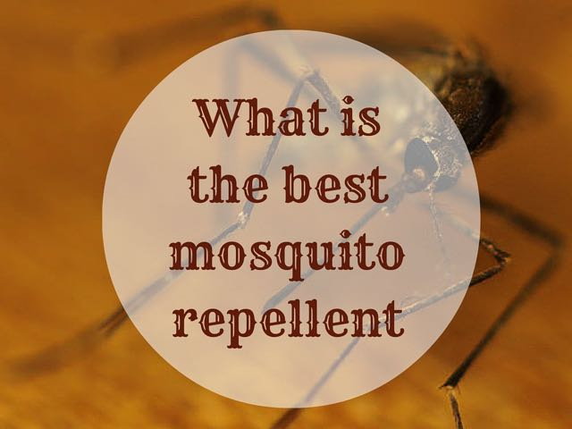 What Is The Best Mosquito Repellent Indiana Jo
