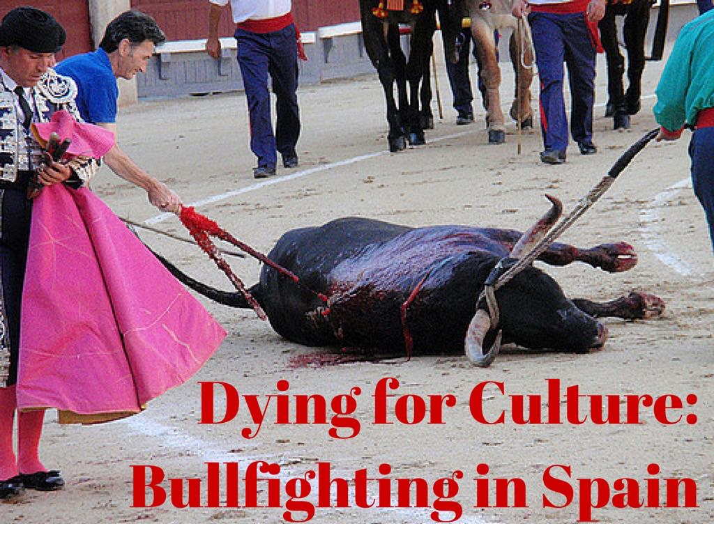 Dying for Culture- Bullfighting in Spain