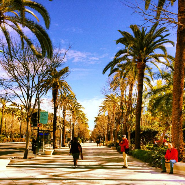 Best Things to do in Malaga Paseo de Espana