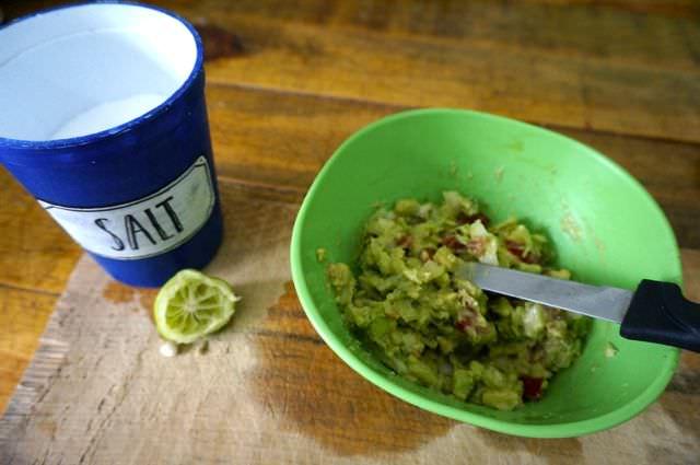 Quick and Easy Guacamole Recipe 9