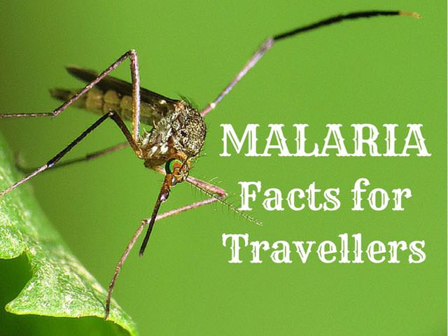 malaria facts for travellers