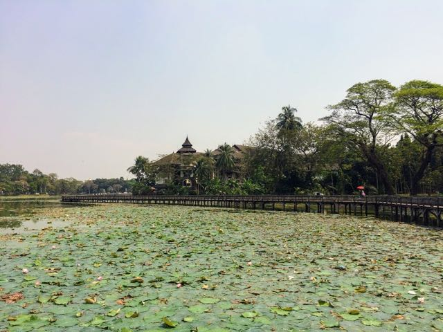 Things to do in Yangon Bogyoke Park pond