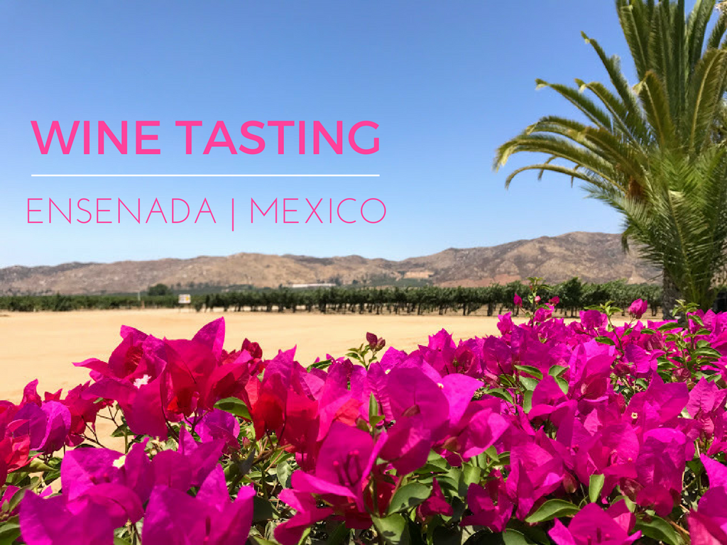 Guide to how to go wine tasting in Ensenada including which vineyards to visit, which wine tour company to book with (including 10% discount), where to stay and what to do in Ensenada