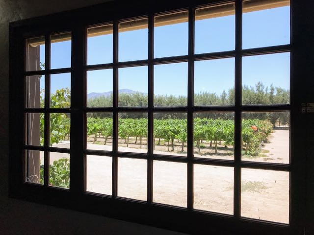 Wine Tasting in Ensenada Mexico Window