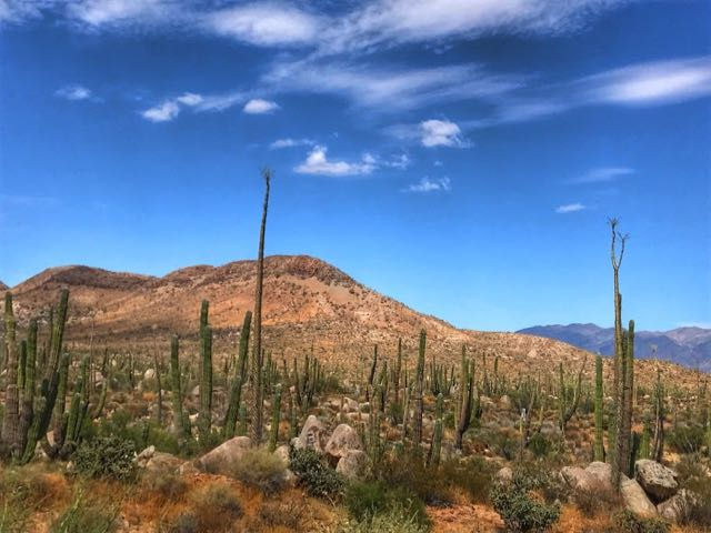 Baja California Road Trip Itinerary Route 1