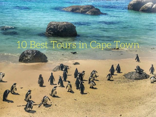 10 Best Tours in Cape Town Main