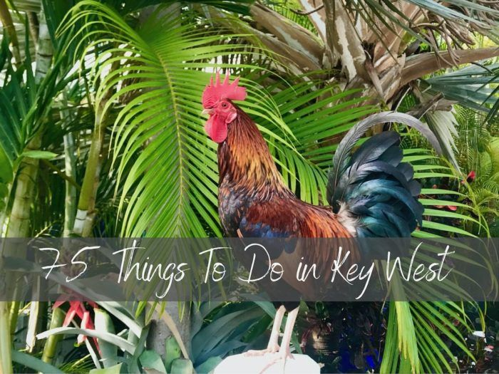 Things to Do in Key West Main