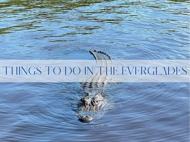 Things To Do In The Everglades Main
