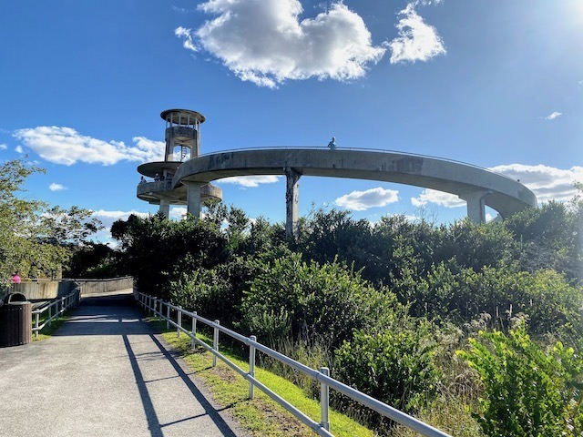 Things To Do In the everglades Observation tower