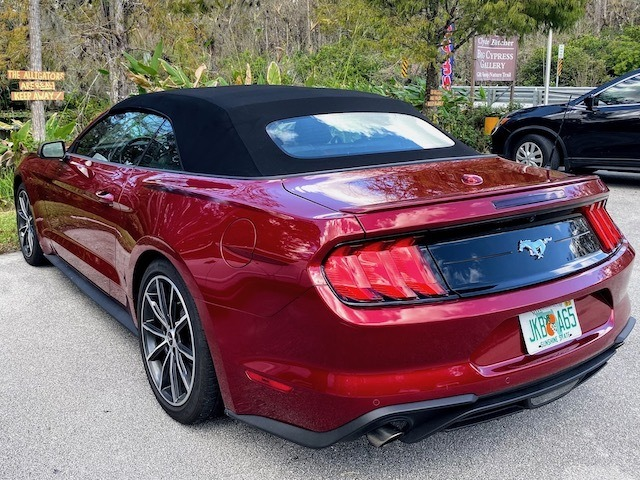 Things To Do In the everglades Mustang convertible